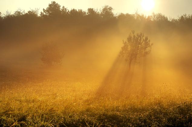 Sunrise Overture pt.03 by Zsolt Zsigmond (www.realitydream.hu)