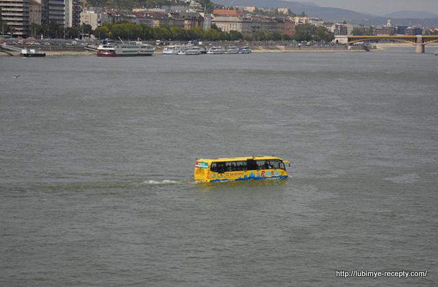 Дунайский трамвай