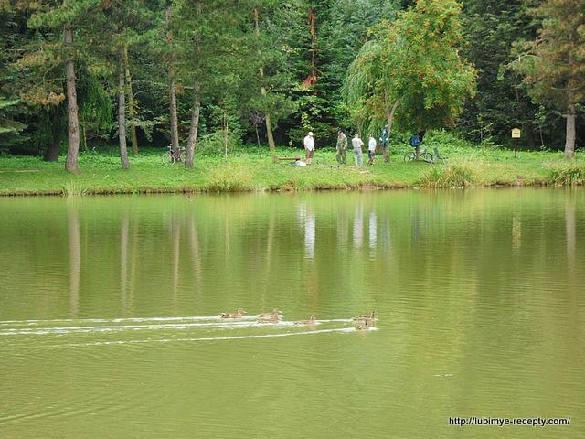 озеро, рыбаки