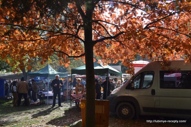 Foto Vengrii. Vengerskiy kashtanovyy festival' v oktyabre 19