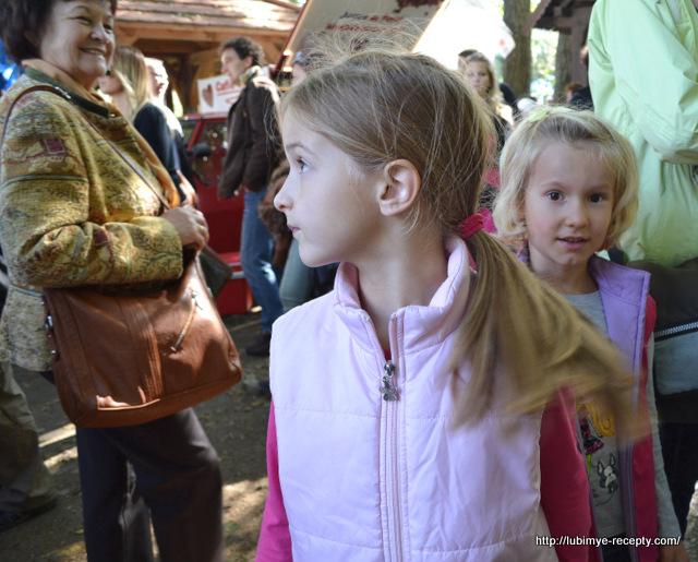 Foto Vengrii. Vengerskiy kashtanovyy festival' v oktyabre 22