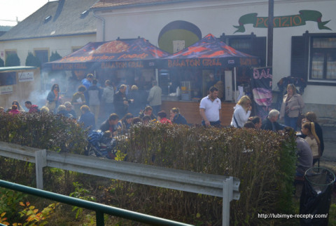Festivali-Vengrii.-Gesztenyeв_nnep-23-480x322