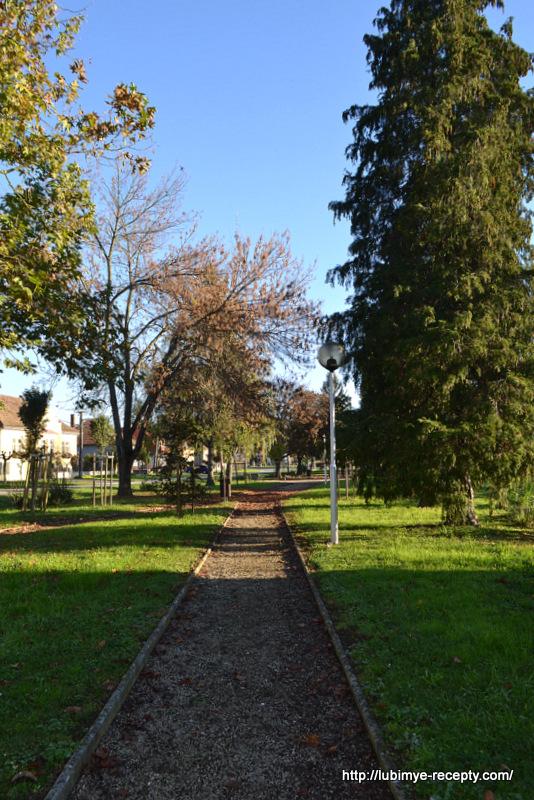 Город Бюк (Бюкфюрдо)112
