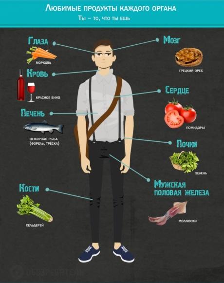 Инфографика о еде1
